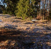 bacowka-obidza-beskid-sadecki-2015-12-31_09-15-58-dsc_6966