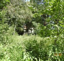 chocicza-jarocin-i-okolice-2016-dscn2313