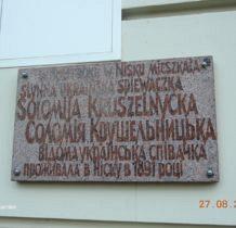 nisko-lasy-janowskie-2016-08-27_08-25-08-dscn3638