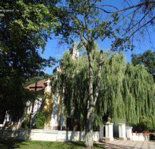 pogrzybow-jarocin-i-okolice-2016-dscn1370