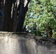 porytowe-wzgorze-lasy-janowskie-2016-08-26_11-41-11-dsc_0430