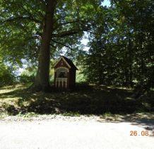 szklarnia-lasy-janowskie-2016-08-26_13-05-03-dscn3545
