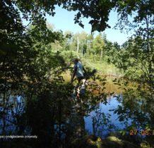 gielnia-lasy-janowskie-2016-08-27_12-31-23-dscn3680