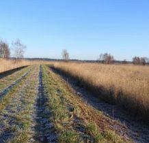 Nowe Warpno- po lewej zalew, po prawej łaki