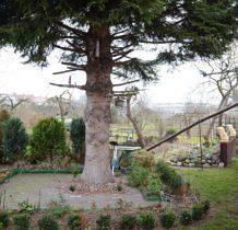 Nowe Warpno-wracamy do naszego domku-ogladamy atrakcje ogródka