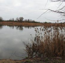 Siadło Dolne- odrzański brzeg
