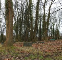 Siadło Górne- stare nagrobki ukryte wśród drzew