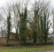 Smolęcin-ruiny kościoła z XIIIw