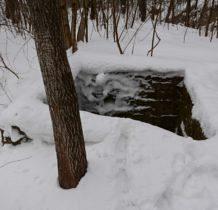 Iwla-ruiny młyna przy potoku Iwielka