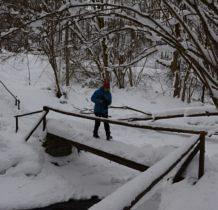 Wisłoczek- mostek na Wisłoczku