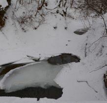 Iwla-potok Iwielka