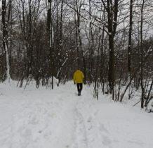 Rudawka Rymanowska-brzegiem Wisłoka w kierunku lodospadów