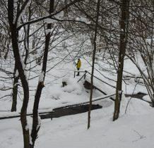 Wisłoczek-nad potokiem