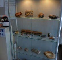 skamieniałości i minerały