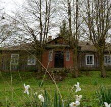 Dłużniów-przy budynku kwiaty,drzewa owocowe