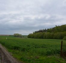 Myców-droga (dla terenówki)prowadzi do Dłużniowa-kolejnej pięknej cerkwi