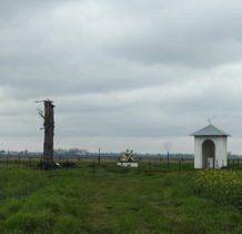 Dyniska-Sosna Grottgera(leżaca),pomnik i kapliczka