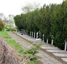 Husynne-cmentarz-groby 25 polskich żołnierzy