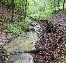 dnem doliny płynie potok Bolechówka