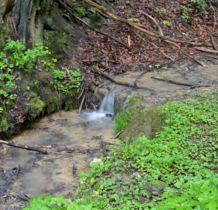 potok zasilany przez małe źródła krasowe