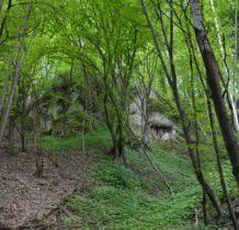 pochowane w lesie