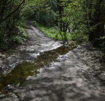 potok Kobylanka pojawia się i znika