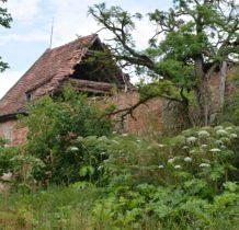 Dziewin-budynki gospodarcze w ruinie