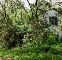 Góra Bałdrzychowska- dwór w drzewach