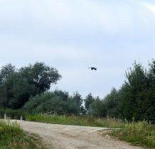 Łyszkowice- lotem bliżej