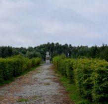 Siedlatków- pomnik i szpaler krzewów