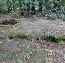 Spycimierz Kolonia- bunkry ukryte bw lesie