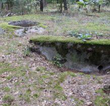 Spycimierz Kolonia- zamaskowane w lesie