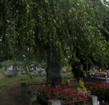 Tur- na cmentarzu pod parasolem liści