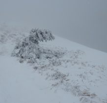 śnieżne dzieło przy szlaku