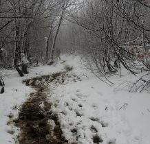 na szlaku błotnisty śnieg