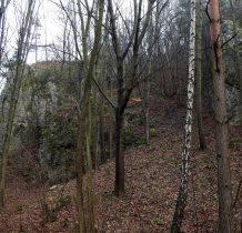 skały ukryte za drzewami teraz dobrze widoczne gdy drzewa pozbawione liści