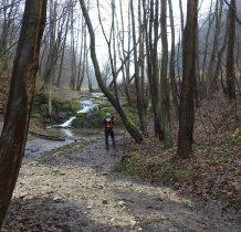 wodospad zakończony jest stromym stopniem o wysokości pok. 4 m