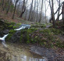 woda spływa po omszałych wapieniach
