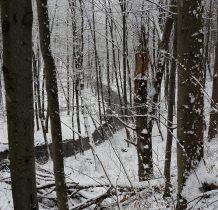 meandry Rudawki widziane zza drzew