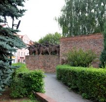 Wołów-byki