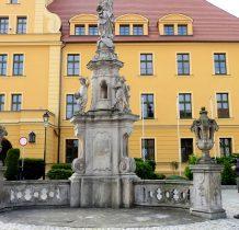 Wołów-kolumna maryjna przed zamkiem