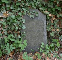 Stary Wołów-cmentarz