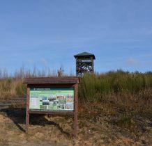 Tleń-przy drodze Tuchola-Tleń-wieża widokowa skad można zobaczyć rozmiar klęski żywiołowej z 2012 roku