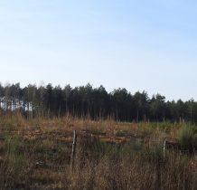 Tleń-pas zniszczeń osiagał szerokość 1km