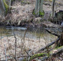 Zielona Łaka-rezerwat przyrody Dolina Rzeki Brdy