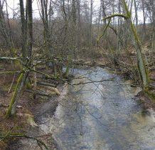 Zielojna Łaka-z mostu