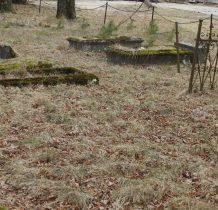 Wysoka-pozostałości cmentarza ewangelickiego