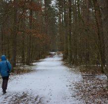 Gródek-przy drodze Gródek-Laskowice-idzemy do Kamienia św.Wojciecha