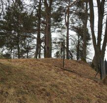 Laski-Sarnia Góra-zbiorowa mogiła zmarłych na cholerę