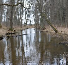 Laski-Prusina meandrujaca wśród lasów i łak